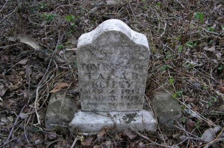 KELLEY, TOM B. - Lawrence County, Tennessee | TOM B. KELLEY - Tennessee Gravestone Photos