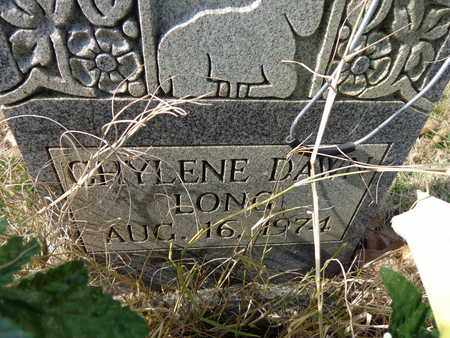 LONG, CHYLENE DAWN - Lawrence County, Tennessee   CHYLENE DAWN LONG - Tennessee Gravestone Photos