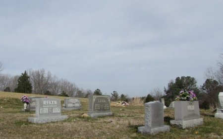 CEMETERY, LUNA - Lawrence County, Tennessee | LUNA CEMETERY - Tennessee Gravestone Photos
