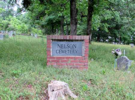 CEMETERY, NELSON - Lawrence County, Tennessee | NELSON CEMETERY - Tennessee Gravestone Photos