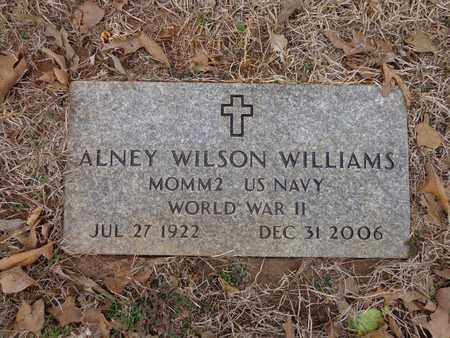 WILLIAMS, ALNEY WILSON - Lawrence County, Tennessee | ALNEY WILSON WILLIAMS - Tennessee Gravestone Photos