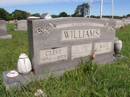 WILLIAMS, ALICE - Lawrence County, Tennessee | ALICE WILLIAMS - Tennessee Gravestone Photos