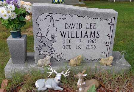 WILLIAMS, DAVID LEE - Lawrence County, Tennessee | DAVID LEE WILLIAMS - Tennessee Gravestone Photos