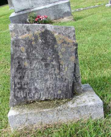 WILLIAMS, ELIZABETH - Lawrence County, Tennessee | ELIZABETH WILLIAMS - Tennessee Gravestone Photos