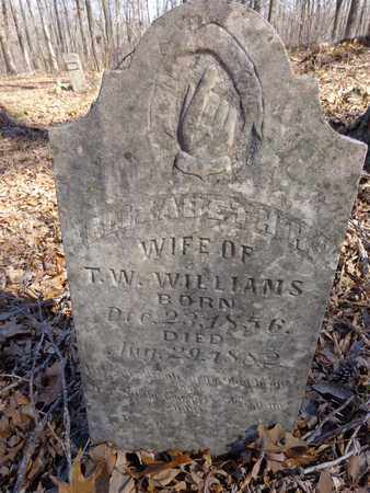 WILLIAMS, ELIZABETH H. - Lawrence County, Tennessee | ELIZABETH H. WILLIAMS - Tennessee Gravestone Photos