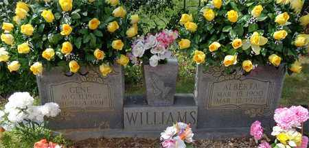 WILLIAMS, ALBERTA - Lawrence County, Tennessee | ALBERTA WILLIAMS - Tennessee Gravestone Photos