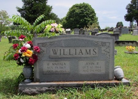 WILLIAMS, M. MAHALA - Lawrence County, Tennessee | M. MAHALA WILLIAMS - Tennessee Gravestone Photos