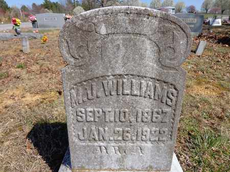 WILLIAMS, M. J. - Lawrence County, Tennessee | M. J. WILLIAMS - Tennessee Gravestone Photos