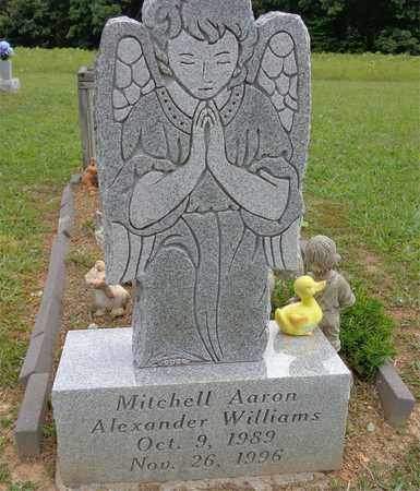 WILLIAMS, MITCHELL AARON ALEXANDER - Lawrence County, Tennessee | MITCHELL AARON ALEXANDER WILLIAMS - Tennessee Gravestone Photos