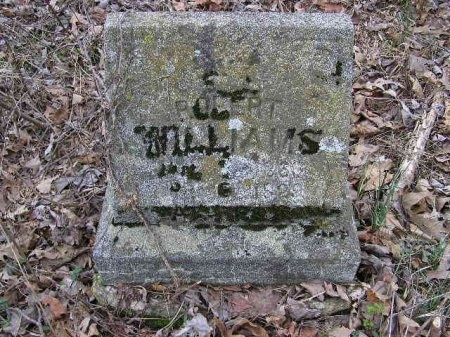 WILLIAMS, ROBERT - Lawrence County, Tennessee | ROBERT WILLIAMS - Tennessee Gravestone Photos