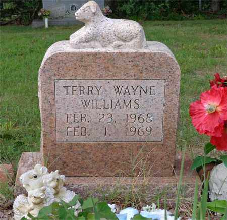 WILLIAMS, TERRY WAYNE - Lawrence County, Tennessee   TERRY WAYNE WILLIAMS - Tennessee Gravestone Photos
