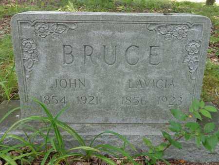 BRUCE, LAVICIA - Lewis County, Tennessee   LAVICIA BRUCE - Tennessee Gravestone Photos