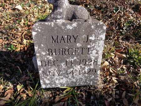 BURGETT, MARY J. - Lewis County, Tennessee | MARY J. BURGETT - Tennessee Gravestone Photos
