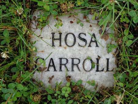 CARROLL, HOSA - Lewis County, Tennessee   HOSA CARROLL - Tennessee Gravestone Photos
