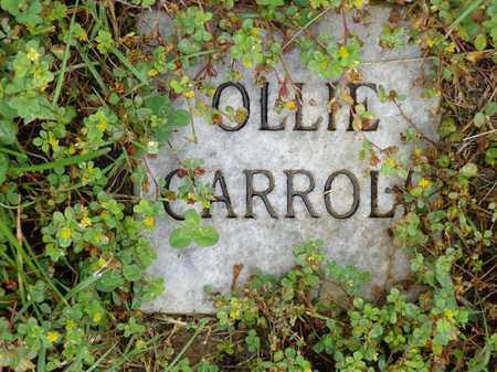 CARROLL, OLLIE - Lewis County, Tennessee | OLLIE CARROLL - Tennessee Gravestone Photos