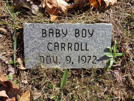 CARROLL, BABY BOY - Lewis County, Tennessee | BABY BOY CARROLL - Tennessee Gravestone Photos