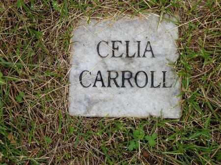 CARROLL, CELIA - Lewis County, Tennessee | CELIA CARROLL - Tennessee Gravestone Photos