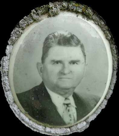 CARROLL, CHARLES L (PHOTO) - Lewis County, Tennessee | CHARLES L (PHOTO) CARROLL - Tennessee Gravestone Photos