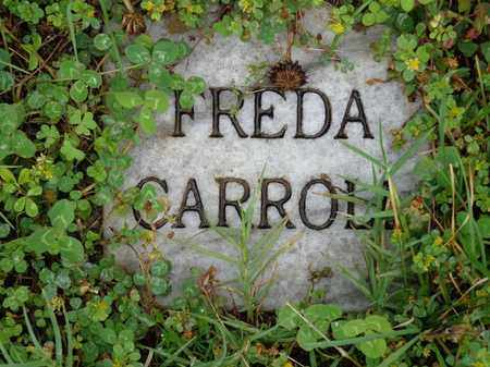 CARROLL, FREDA - Lewis County, Tennessee | FREDA CARROLL - Tennessee Gravestone Photos