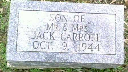 CARROLL, INFANT - Lewis County, Tennessee   INFANT CARROLL - Tennessee Gravestone Photos