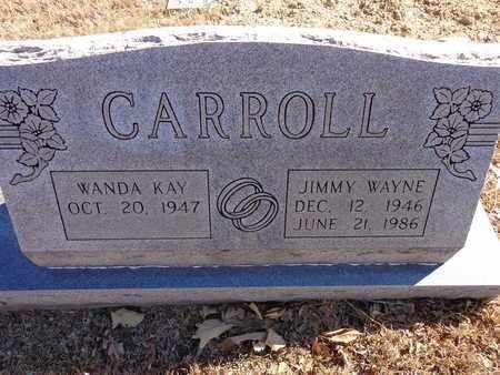 CARROLL, JIMMY WAYNE - Lewis County, Tennessee | JIMMY WAYNE CARROLL - Tennessee Gravestone Photos