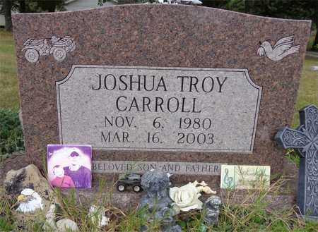 CARROLL, JOSHUA TROY - Lewis County, Tennessee | JOSHUA TROY CARROLL - Tennessee Gravestone Photos
