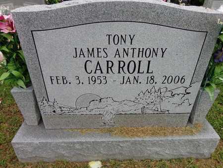 "CARROLL, JAMES ANTHONY ""TONY"" - Lewis County, Tennessee | JAMES ANTHONY ""TONY"" CARROLL - Tennessee Gravestone Photos"