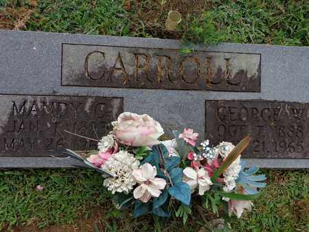 CARROLL, MANDY C - Lewis County, Tennessee | MANDY C CARROLL - Tennessee Gravestone Photos