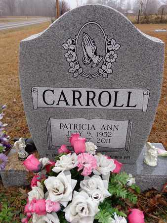 CARROLL, PATRICIA ANN - Lewis County, Tennessee | PATRICIA ANN CARROLL - Tennessee Gravestone Photos