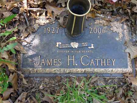 CATHEY, JAMES H - Lewis County, Tennessee | JAMES H CATHEY - Tennessee Gravestone Photos