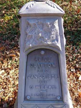 CLAYTON, ALICE - Lewis County, Tennessee | ALICE CLAYTON - Tennessee Gravestone Photos