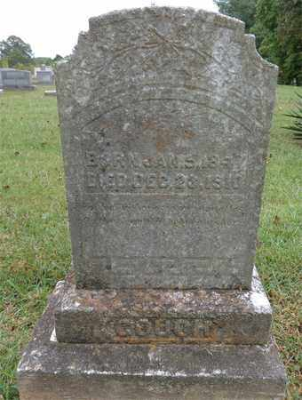 COUCH, M.P. - Lewis County, Tennessee   M.P. COUCH - Tennessee Gravestone Photos