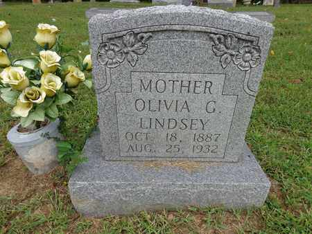 LINDSEY, OLIVIA G - Lewis County, Tennessee | OLIVIA G LINDSEY - Tennessee Gravestone Photos