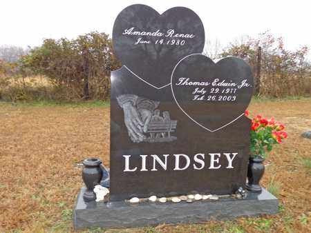 LINDSEY, THOMAS EDWIN (JR) - Lewis County, Tennessee | THOMAS EDWIN (JR) LINDSEY - Tennessee Gravestone Photos