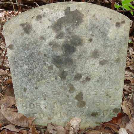 MASSEY, INFANT - Lewis County, Tennessee | INFANT MASSEY - Tennessee Gravestone Photos