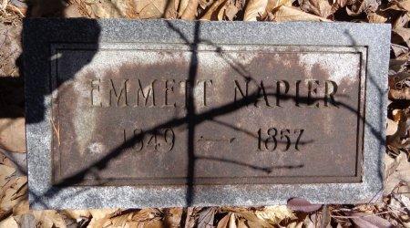 NAPIER, EMMETT - Lewis County, Tennessee | EMMETT NAPIER - Tennessee Gravestone Photos