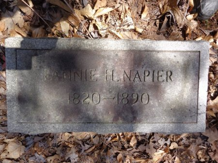 NAPIER, FANNIE H - Lewis County, Tennessee | FANNIE H NAPIER - Tennessee Gravestone Photos