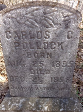 POLLOCK, CARLOS C - Lewis County, Tennessee | CARLOS C POLLOCK - Tennessee Gravestone Photos