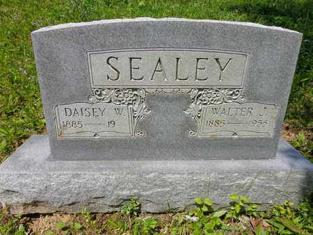 SEALEY, WALTER J - Lewis County, Tennessee | WALTER J SEALEY - Tennessee Gravestone Photos