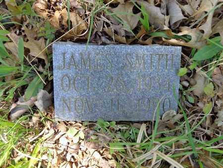 SMITH, JAMES - Lewis County, Tennessee | JAMES SMITH - Tennessee Gravestone Photos