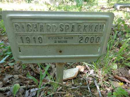 SPARKMAN, RICHARD - Lewis County, Tennessee | RICHARD SPARKMAN - Tennessee Gravestone Photos