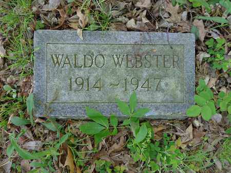 WEBSTER, WALDO - Lewis County, Tennessee | WALDO WEBSTER - Tennessee Gravestone Photos
