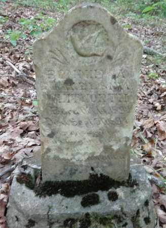 WHITWORTH, BONNIE A - Lewis County, Tennessee | BONNIE A WHITWORTH - Tennessee Gravestone Photos