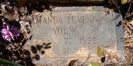 YOUNG, AMANDA LUVENIA - Lewis County, Tennessee | AMANDA LUVENIA YOUNG - Tennessee Gravestone Photos