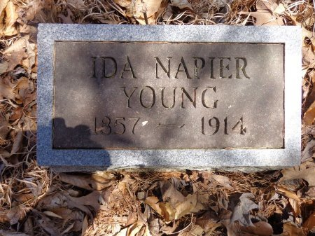 NAPIER YOUNG, IDA - Lewis County, Tennessee | IDA NAPIER YOUNG - Tennessee Gravestone Photos