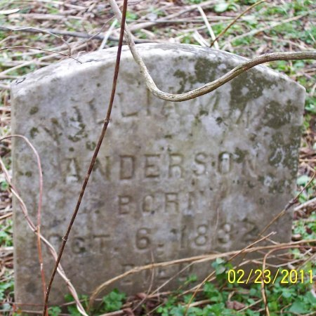 ANDERSON, WILLIAM M. - Lincoln County, Tennessee | WILLIAM M. ANDERSON - Tennessee Gravestone Photos
