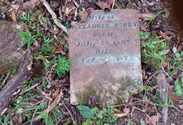 GROCE ASHBY, LAVINIA - Lincoln County, Tennessee | LAVINIA GROCE ASHBY - Tennessee Gravestone Photos