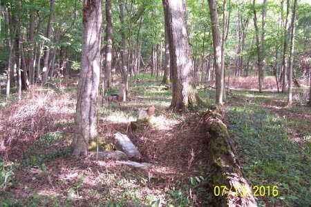 *BLEDSOE OVERVIEW,  - Lincoln County, Tennessee |  *BLEDSOE OVERVIEW - Tennessee Gravestone Photos