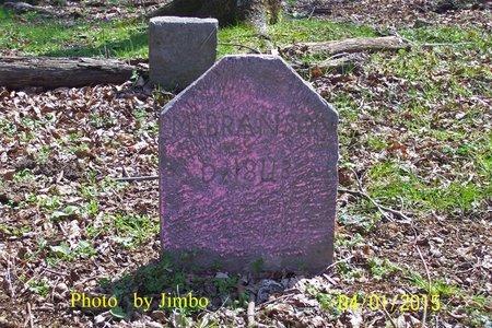 BRANSON, M. - Lincoln County, Tennessee | M. BRANSON - Tennessee Gravestone Photos