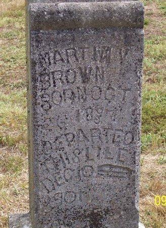 BROWN, MARTIN VAN BUREN - Lincoln County, Tennessee | MARTIN VAN BUREN BROWN - Tennessee Gravestone Photos